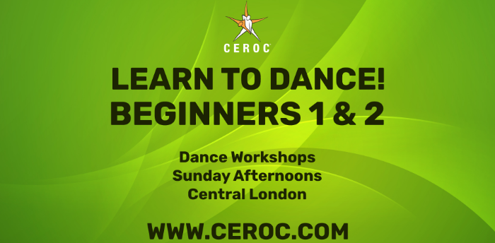 Beginners One Learn to Dance Workshop